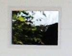 Fenster Kunststoffglas zu NWS Gartenhaus 49x32 cm weiß oder braun Bild 2