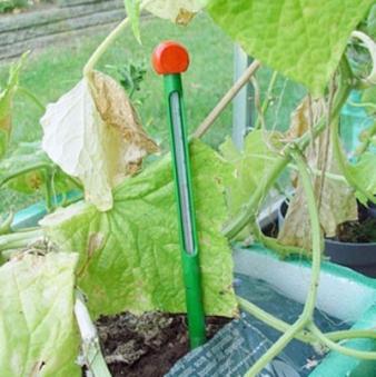 Erdbodenthermometer für Juliana Gewächshaus Bild 1
