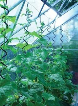 Pflanzenspirale für Juliana Gewächshaus Bild 1